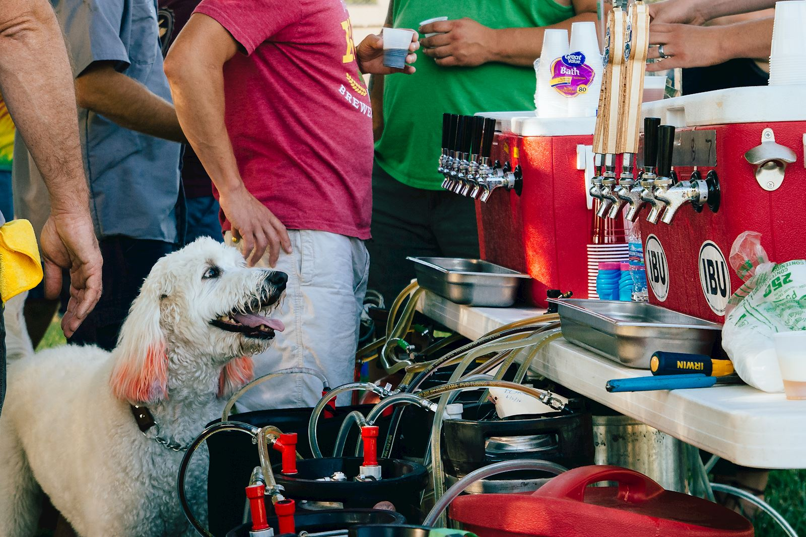 Yappy Hour at Peace Tree Brewing + DNA Day