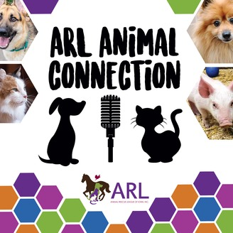 ARL Animal Connection