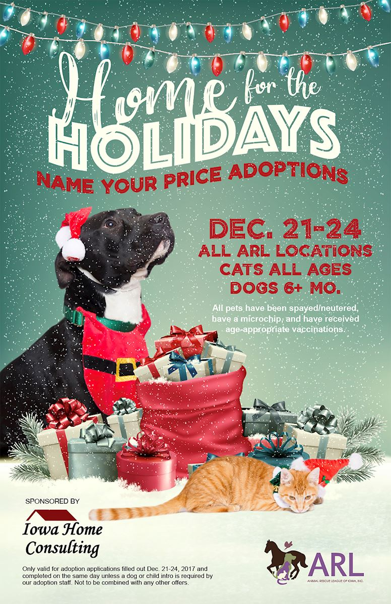 Home For The Holidays Adopt A Thon Animal Rescue League Of Iowa