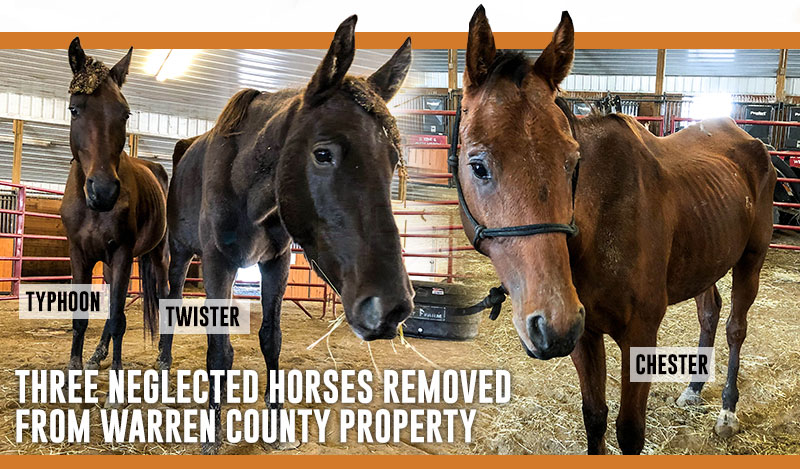 3 Horses Removed from Warren County