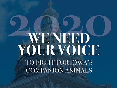 We Need Your Voice to Fight for Iowa