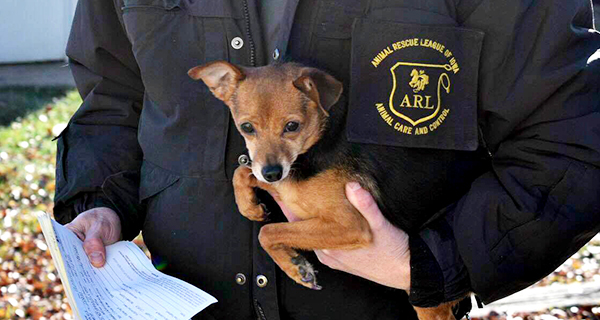 Animal Control Services FAQ