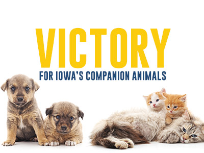 Victory for Iowa