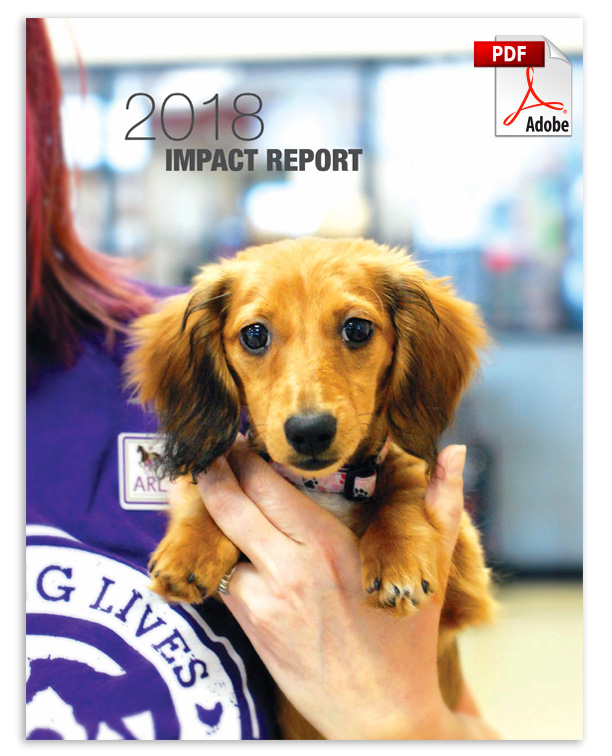 View ARL's 2018 Impact Report