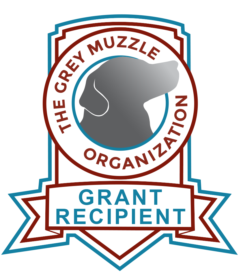 Grey Muzzle Badge