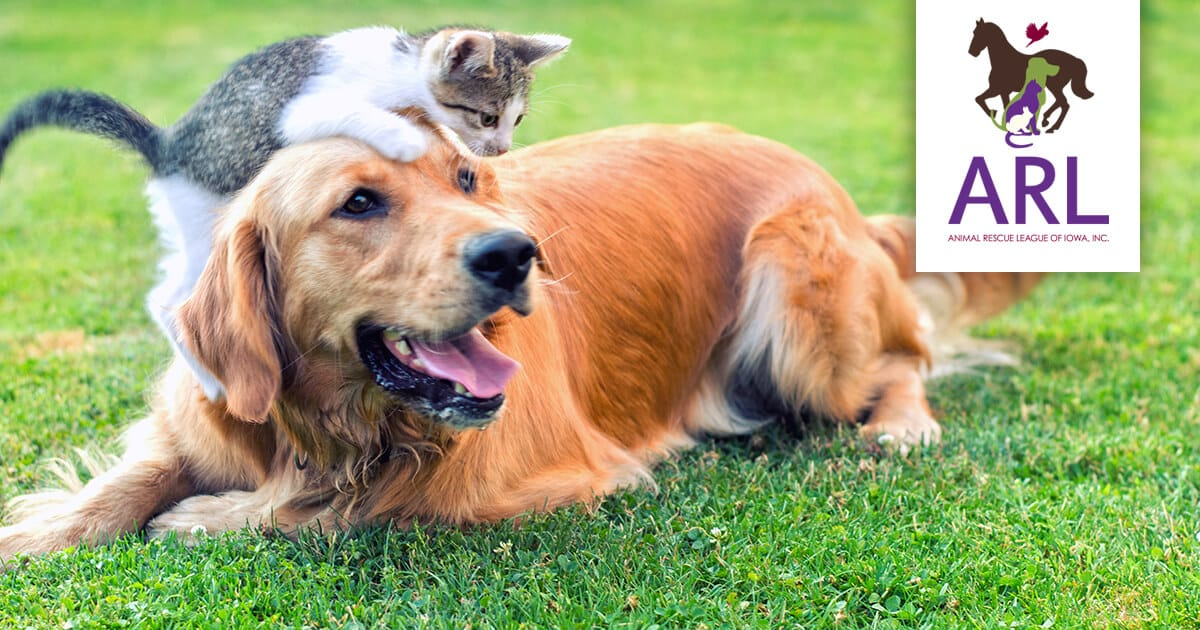 Animal Rescue League of Iowa, Inc